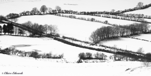 Fields of snow